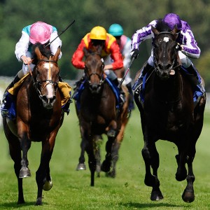 race nights Kent, London, entertainment, race nights, london, fun casino